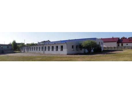 Magazyn do wynajęcia - Oleśnica, Oleśnicki, 1524 m², 10 PLN, NET-16886