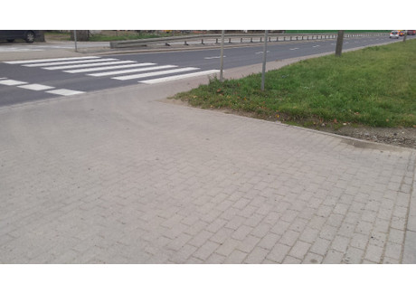 Działka na sprzedaż - Długołęka, Wrocławski, 4000 m², 1 000 000 PLN, NET-16762