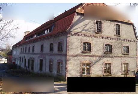 Magazyn, hala na sprzedaż - Nowe Miasteczko, 459 m², 119 000 PLN, NET-gls2007830