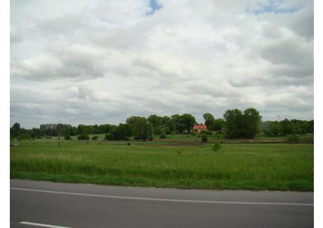 Działka na sprzedaż - Nowe Miasteczko, Małaszowice, 7552 m², 129 000 PLN, NET-wer123