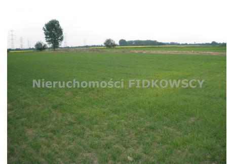 Działka na sprzedaż - Żelazna, Dąbrowa, Opolski, 1365 m², 87 360 PLN, NET-GS-381