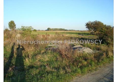 Działka na sprzedaż - Żelazna, Opolski, 6000 m², 384 000 PLN, NET-GS-56