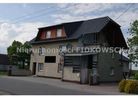 Dom na sprzedaż - Brzezie, Dobrzeń Wielki, Opolski, 450 m², 950 000 PLN, NET-DS-572