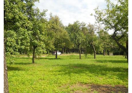 Działka na sprzedaż - Siercza, Wieliczka (gm.), Wielicki (pow.), 1343 m², 174 600 PLN, NET-3490