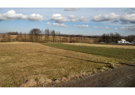 Działka na sprzedaż - Myślenice, Myślenice (gm.), Myślenicki (pow.), 1100 m², 90 000 PLN, NET-m813