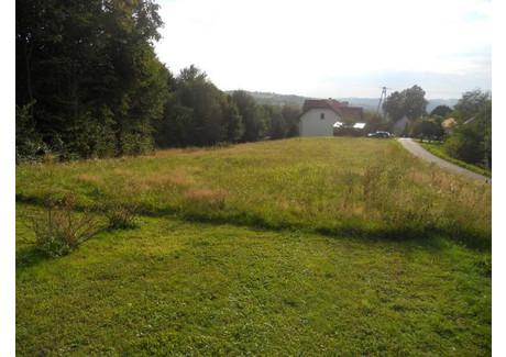 Działka na sprzedaż - Siepraw, Siepraw (gm.), Myślenicki (pow.), 1600 m², 95 000 PLN, NET-m948