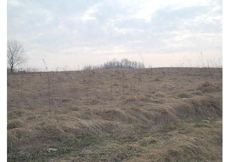 Działka na sprzedaż - Borzęta, Dobczyce, Myślenicki, 1200 m², 87 000 PLN, NET-M339/2