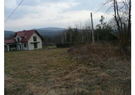 Działka na sprzedaż - Brzezowa, Dobczyce (gm.), Myślenicki (pow.), 1050 m², 95 000 PLN, NET-M571