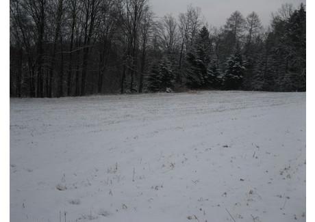 Działka na sprzedaż - Osieczany, Myślenice (gm.), Myślenicki (pow.), 1540 m², 123 000 PLN, NET-m785/a