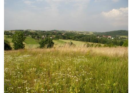 Działka na sprzedaż - Grajów, 3000 m², 405 000 PLN, NET-2162//08//Dz