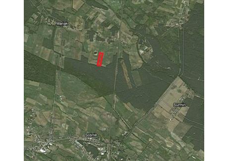Działka na sprzedaż - Mariak, Sośnie (gm.), Ostrowski (pow.), 12 400 m², 45 000 PLN, NET-G202