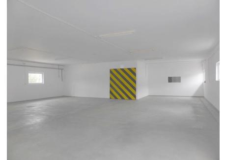 Magazyn do wynajęcia - Szczecin, 150 m², 3000 PLN, NET-GAN20723