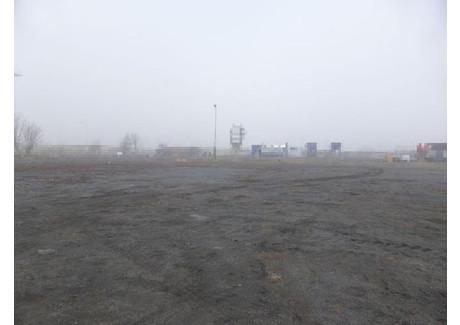 Działka na sprzedaż - Stargard, Stargardzki, 7028 m², 750 000 PLN, NET-GAN20589
