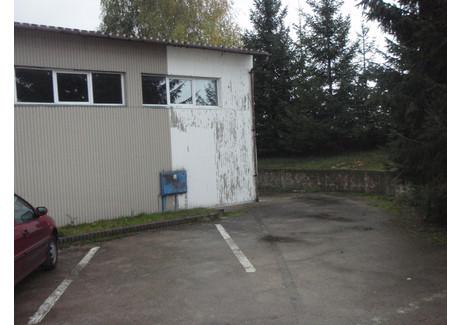 Magazyn do wynajęcia - Kołbaskowo, Policki, 655 m², 6000 PLN, NET-GAN20321