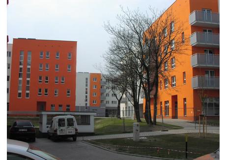 Mieszkanie do wynajęcia - Dąbrowskiego/Kościuszki Os. Stare Miasto, Stare Miasto, Wrocław, 47 m², 1800 PLN, NET-7