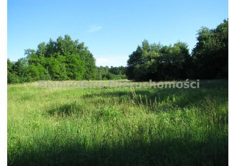 Działka na sprzedaż - Kromnów, Brochów, Sochaczewski, 25 000 m², 300 000 PLN, NET-BGN-GS-24