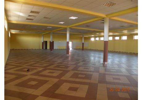 Lokal do wynajęcia - Czernichów, Krakowski (pow.), 645 m², 6000 PLN, NET-75