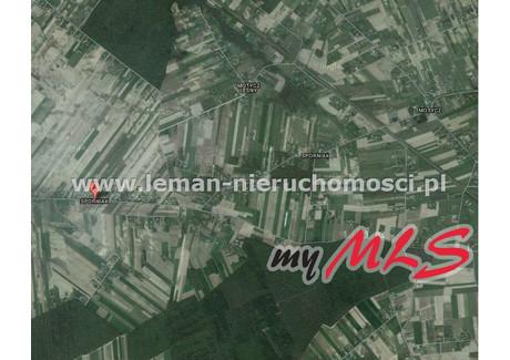 Działka na sprzedaż - Sporniak, Wojciechów, Lubelski, 3186 m², 99 000 PLN, NET-LEM-GS-2752