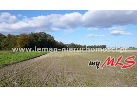 Działka na sprzedaż - Babin, Bełżyce, Lubelski, 11 300 m², 100 000 PLN, NET-LEM-GS-4825