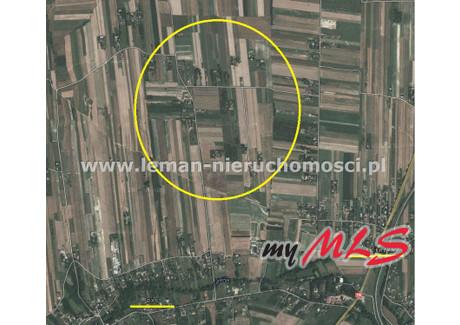 Działka na sprzedaż - Dys, Niemce, Lubelski, 2295 m², 200 000 PLN, NET-LEM-GS-6355