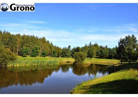 Działka na sprzedaż - Łebno, 79 600 m², 1 910 400 PLN, NET-GA0342