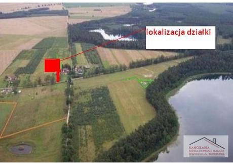 Działka na sprzedaż - Pławno, Czaplinek (gm.), Drawski (pow.), 4343 m², 130 000 PLN, NET-4