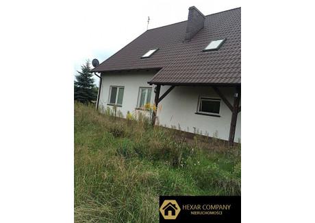 Komercyjne na sprzedaż - Kobylanka, 500 m², 1 400 000 PLN, NET-123/HXR/SS