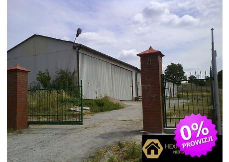 Komercyjne na sprzedaż - Zachód, Szczecin, M. Szczecin, 400 m², 590 000 PLN, NET-115/HXR/OS