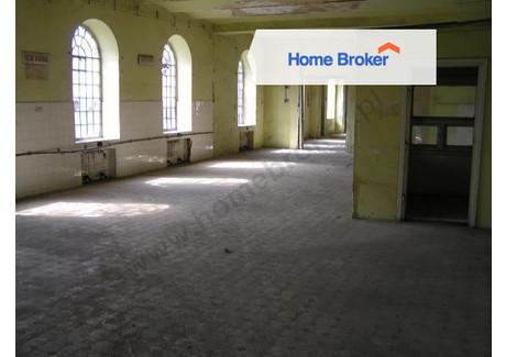 Hala do wynajęcia - Miechów, 1200 m², 4300 PLN, NET-29209