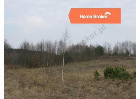 Działka na sprzedaż - Kleszczewo, 4400 m², 175 000 PLN, NET-54104