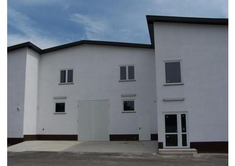 Obiekt na sprzedaż - Świebodzin, Świebodziński, 2500 m², 1 300 000 PLN, NET-ZG01472