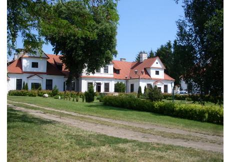 Dom na sprzedaż - Nowa Wieś, Jabłonowo Pomorskie (Gm.), Brodnicki (Pow.), 1175 m², 6 498 000 PLN, NET-dw/1/2011