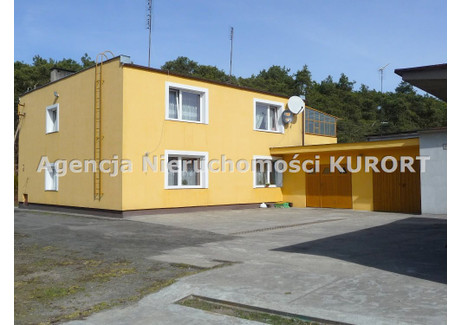 Dom na sprzedaż - Odolion, Ciechocinek, Aleksandrowski, 295 m², 390 000 PLN, NET-DS-283