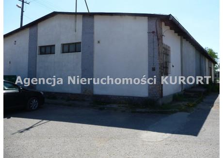 Magazyn na sprzedaż - Aleksandrów Kujawski, Aleksandrowski, 527 m², 380 000 PLN, NET-HS-313