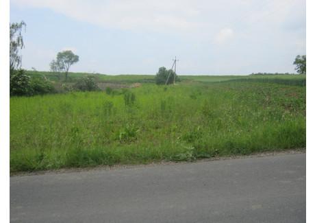 Działka na sprzedaż - Górna Wieś, Michałowice, Krakowski, 1500 m², 185 000 PLN, NET-4448