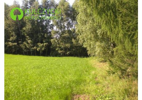 Działka na sprzedaż - Gaj, Mogilany, Krakowski, 800 m², 240 000 PLN, NET-5267