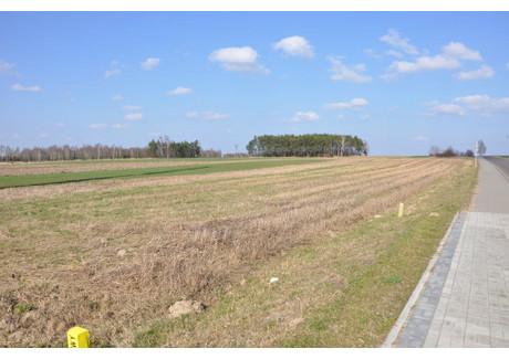 Działka na sprzedaż - Sieradz, Sieradzki, 5008 m², 250 000 PLN, NET-KWK-GS-1738-1