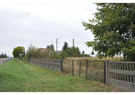Działka na sprzedaż - Borysławice, Błaszki, Sieradzki, 15 900 m², 400 000 PLN, NET-KWK-GS-1537-1
