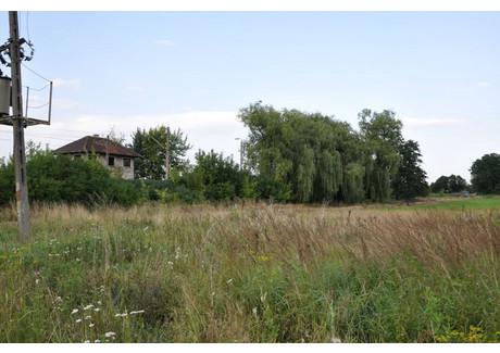 Działka na sprzedaż - Grabowiec, Sieradz, Sieradzki, 13 300 m², 179 000 PLN, NET-KWK-GS-3-1