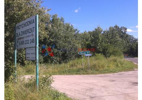 Działka na sprzedaż - Szczęsne, Grodzisk Mazowiecki, Grodziski, 3434 m², 460 000 PLN, NET-7529/2566/OGS
