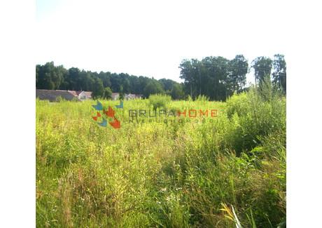Działka na sprzedaż - Borowina, Konstancin-Jeziorna, Piaseczyński, 1700 m², 608 000 PLN, NET-5187/2566/OGS