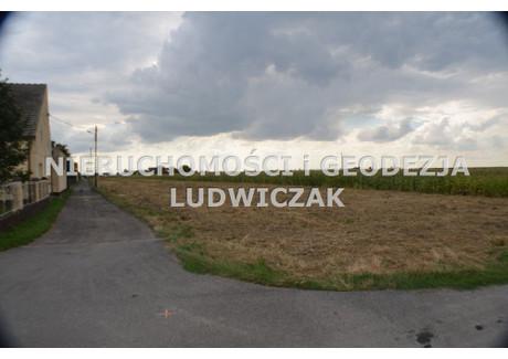 Działka na sprzedaż - Steblów, Krapkowice, Krapkowicki, 600 m², 48 000 PLN, NET-NGL-GS-26