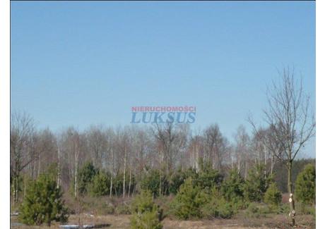 Działka na sprzedaż - Solec, Piaseczno, Piaseczyński, 9900 m², 1 485 000 PLN, NET-16664