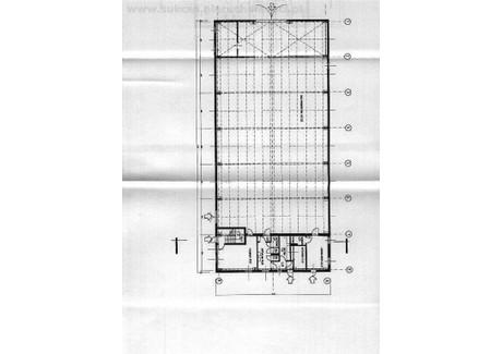 Magazyn na sprzedaż - Jeżów, Brzeziński, 909 m², 800 000 PLN, NET-SUK-HS-4524-21