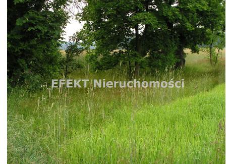 Działka na sprzedaż - Gm.brzeziny, Brzeziński, 12 600 m², 189 000 PLN, NET-GS-625