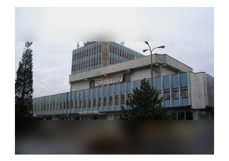 Magazyn, hala do wynajęcia - Warszawska 44 Pabianice, Pabianicki (pow.), 900 m², 6300 PLN, NET-glw1783758
