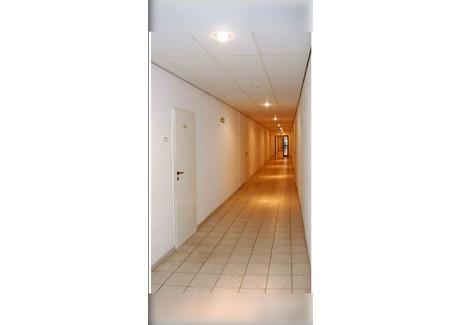Biuro do wynajęcia - Aleksandrowska 67/93 Łódź, 50 m², 900 PLN, NET-glw10525175