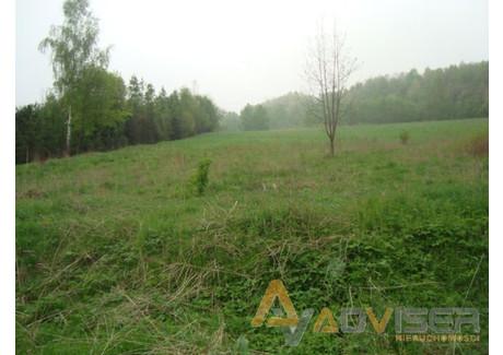 Działka na sprzedaż - Michałkowa, Walim, Wałbrzyski, 26 603 m², 665 075 PLN, NET-ADV-GS-20793-10