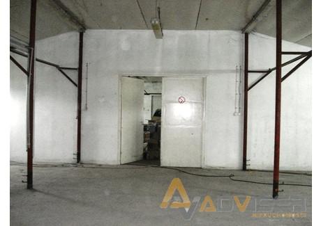 Magazyn do wynajęcia - Płochocin, Ożarów Mazowiecki, Warszawski Zachodni, 500 m², 4000 PLN, NET-ADV-HW-20715