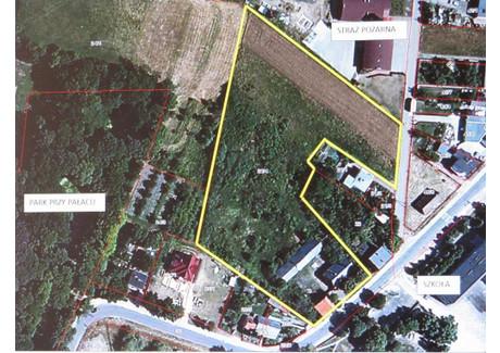 Działka na sprzedaż - Kowalew, Pleszew (gm.), Pleszewski (pow.), 12 500 m², 500 000 PLN, NET-57/08/2014